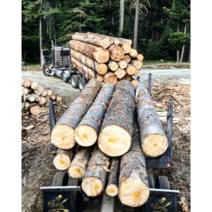 Kitsap Firewood Source 3